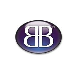 logo Business for Breakfast
